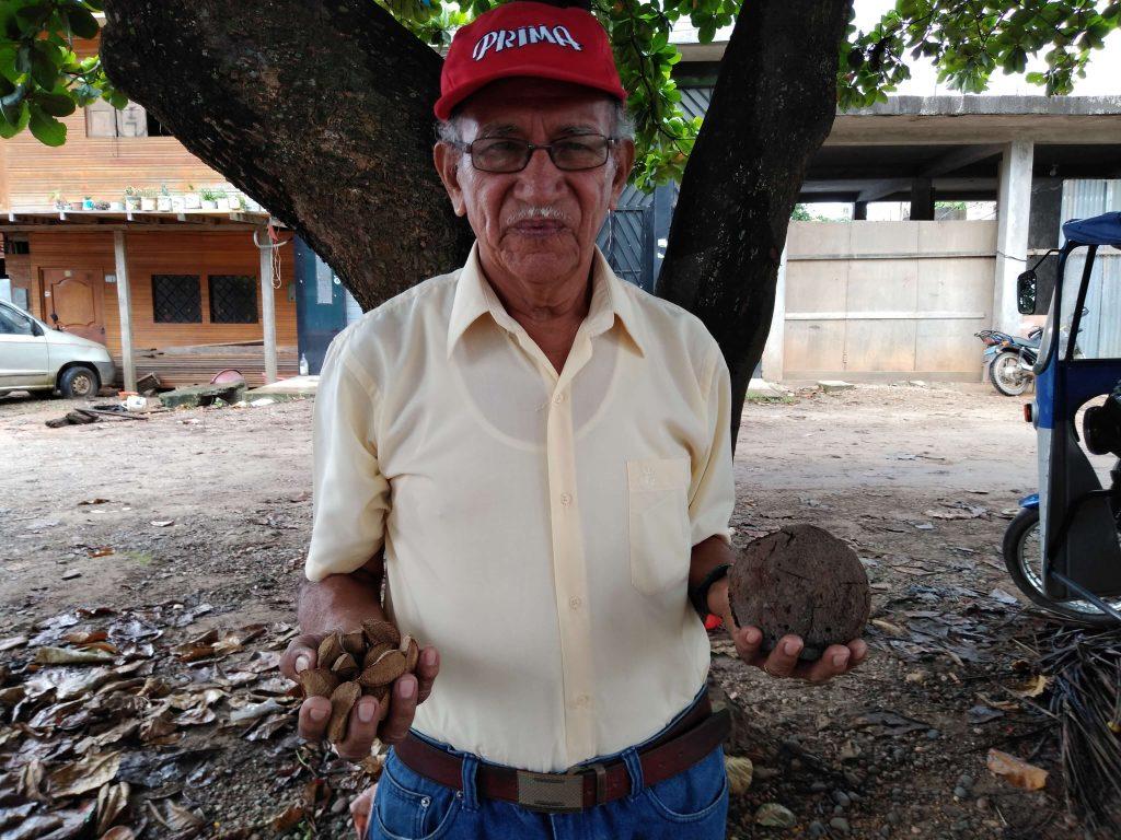 Recolector de Castaña Amazónica